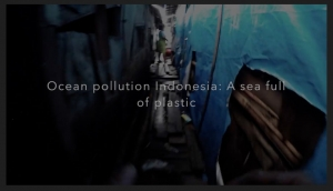 Ocean pollution Indonesia