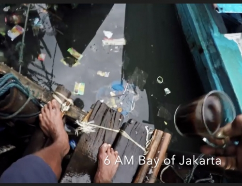 Ocean Pollution Indonesia: a sea full of plastic